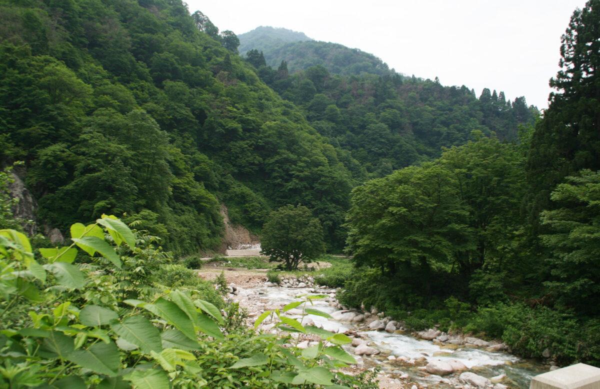 日本一の急流河川
