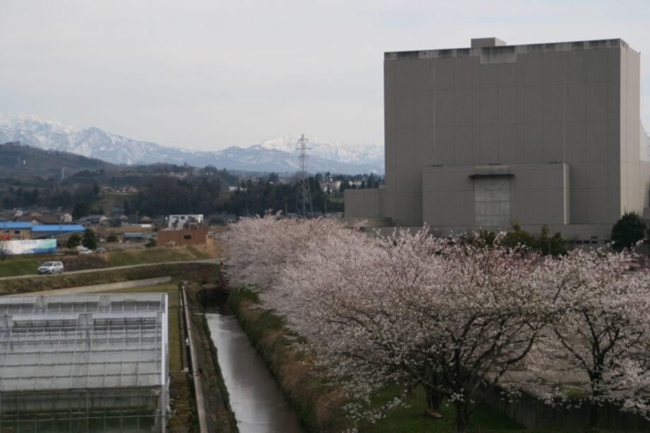 新川文化ホール、角川沿い